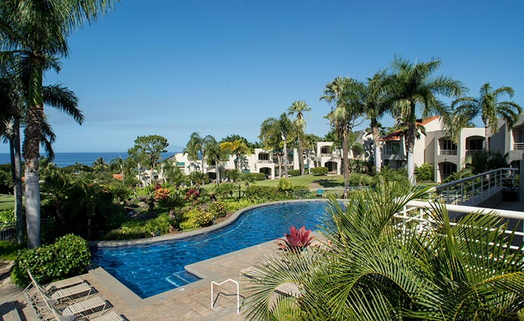palms-at-wailea-featured